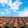Breaking Down the Same Roof Rule